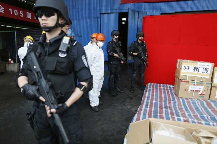 Armed police guard a stash of illegal drug in a case unrelated to trial of Japanese politician Takuma Sakuragi