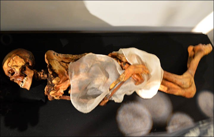 The mummy of Princess Ukok, an ancient Siberian mummy discovered on the Altai Mountains