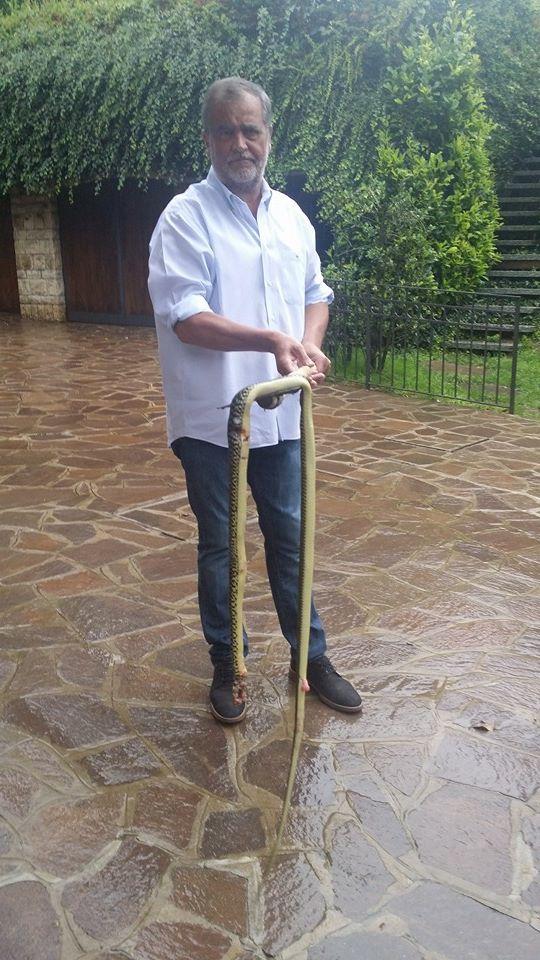 Calderoli snake Cecile Kyenge