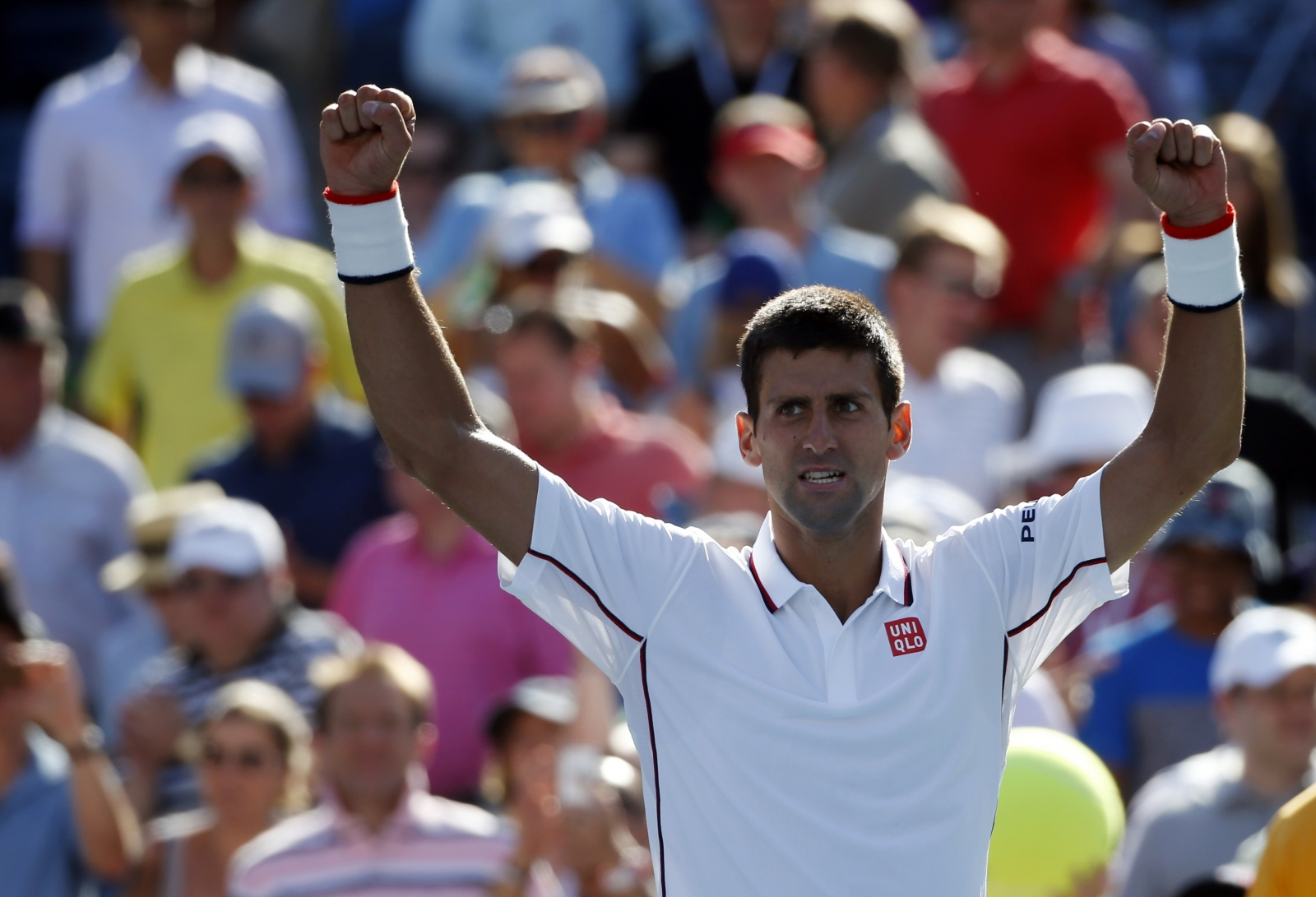 Novak Djokovic celebrating during US Open 2014