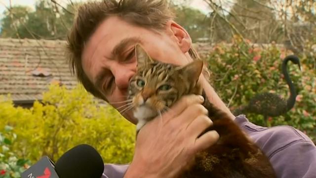 Hero Cat Saves Man from Burning House