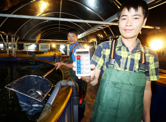 The Internet Of Eels Korean Company Develops Smart Fish Farm