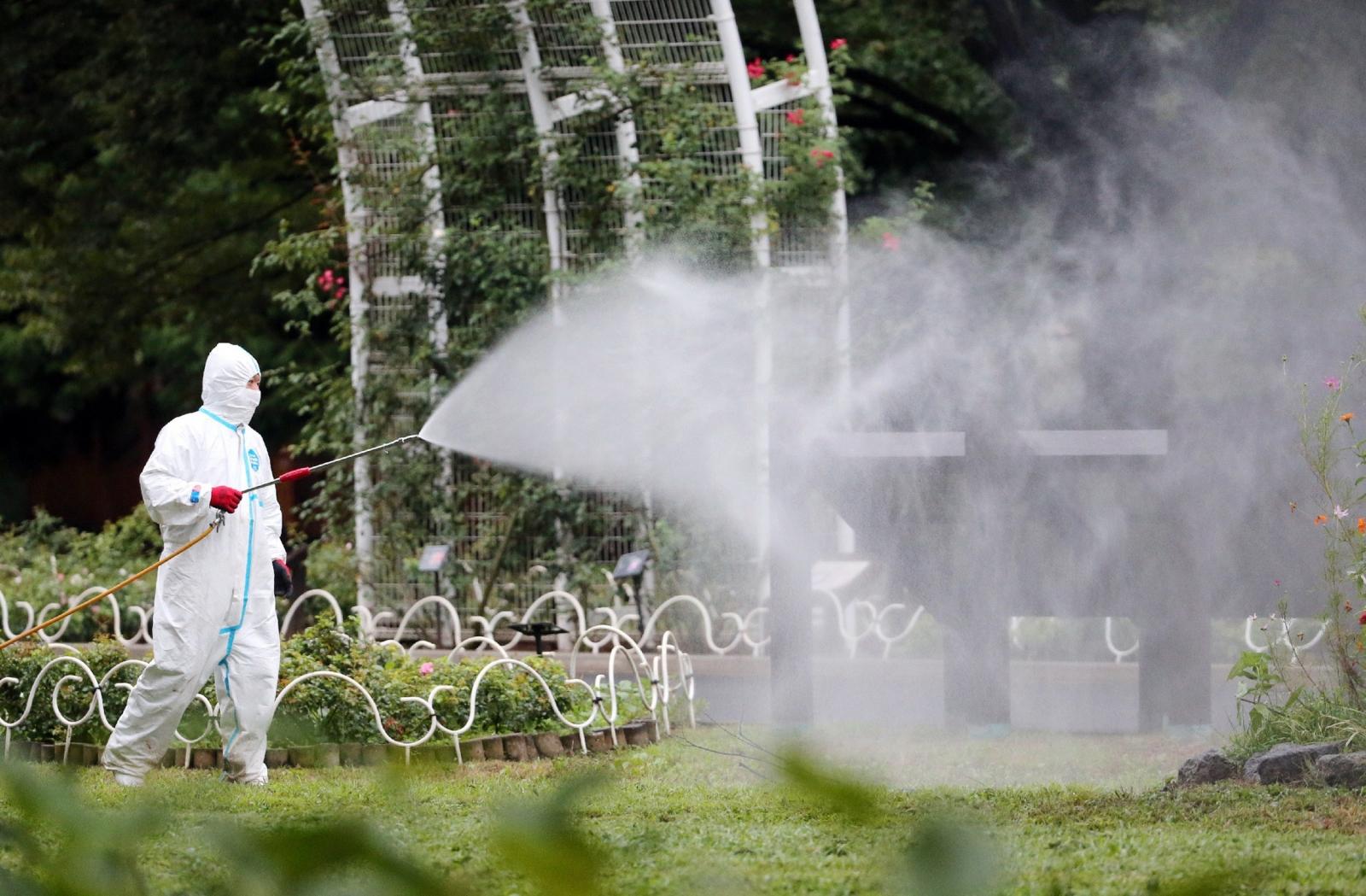 Yoyogi park Tokyo dengue fever