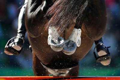 equestrain championships