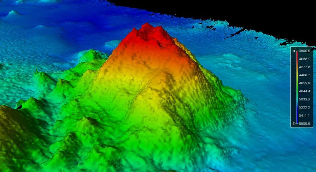 seamount pacific ocean