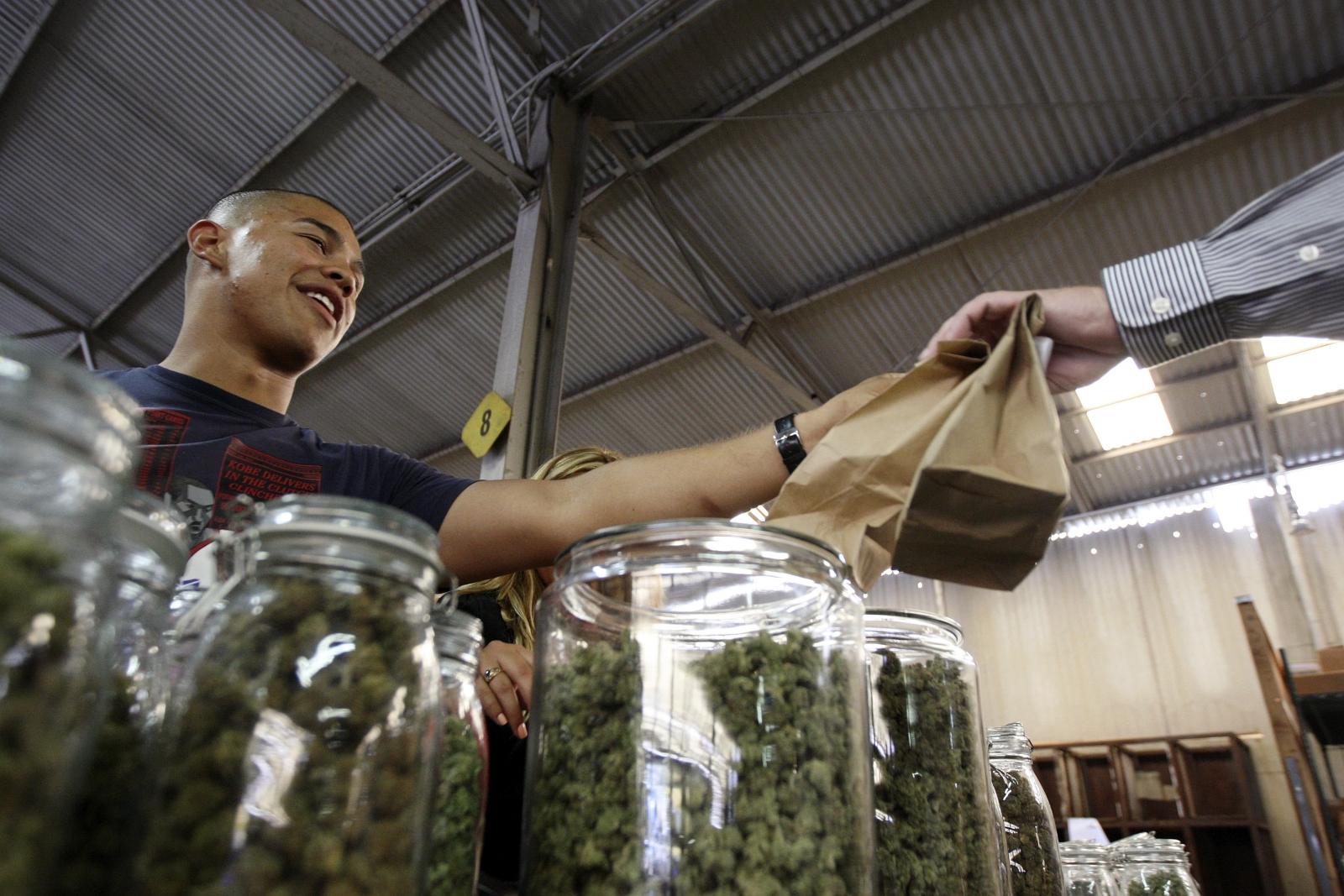 Free marijuana for those earning less than $32,000 (£19,00) in California town of Berkeley