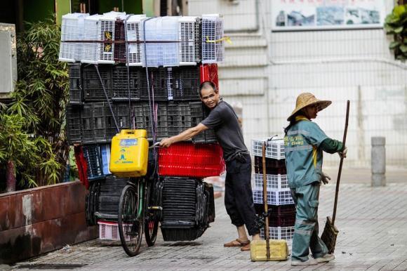 China trade surplus widens