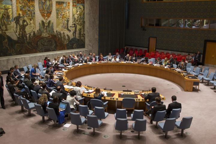 UN Security Council on foreign militants