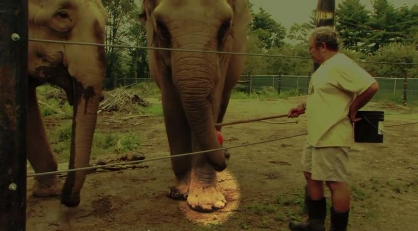 Hope Elephants sanctuary Jim laurita