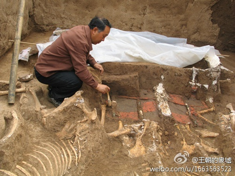 China ancient tomb of first emperor qin shi huangs grandmother the tomb of qin shi huangs grandmother has been discovered in xian sciox Gallery