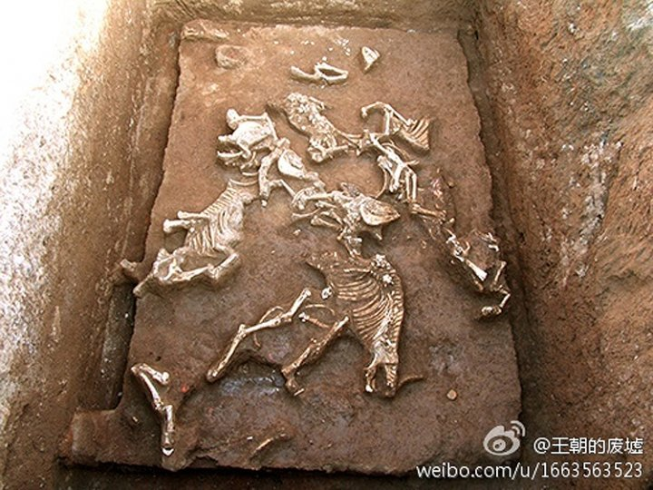 The tomb of Qin Shi Huang's grandmother has been discovered in Xi'an