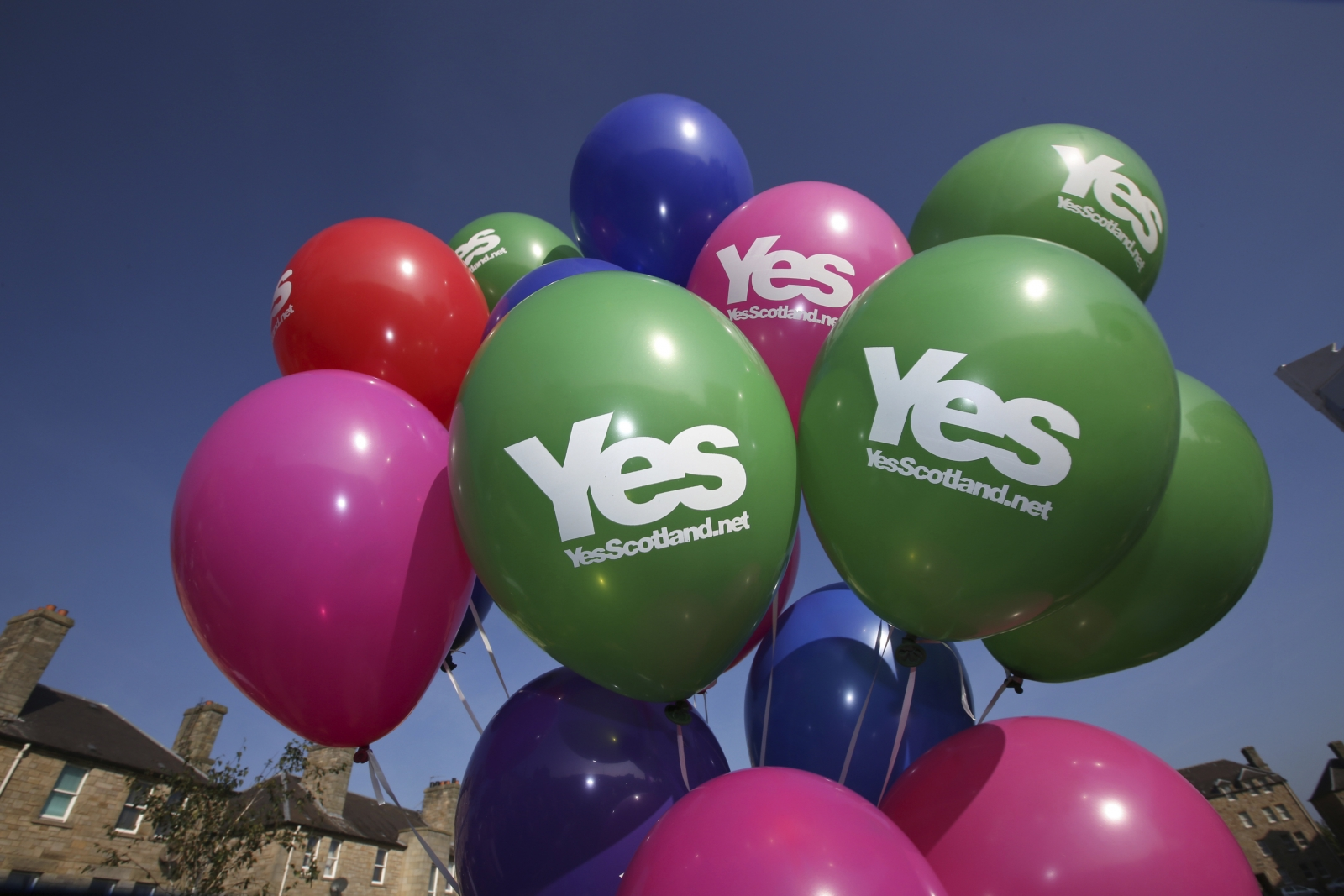 A bunch of 'Yes' balloons are seen as Scotland's First Minister Alex Salmond campaigns in Edinburgh, Scotland September 10, 2014