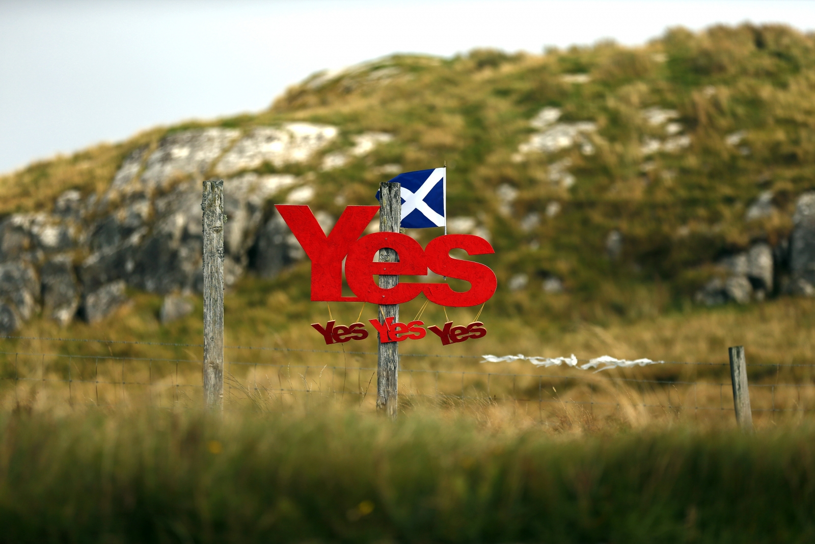 Yes campaign placards are displayed on a fence on the Isle of Lewis in Outer Hebrides