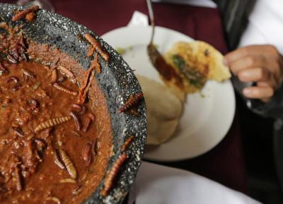 Maguey Worms Taco Mexico 1