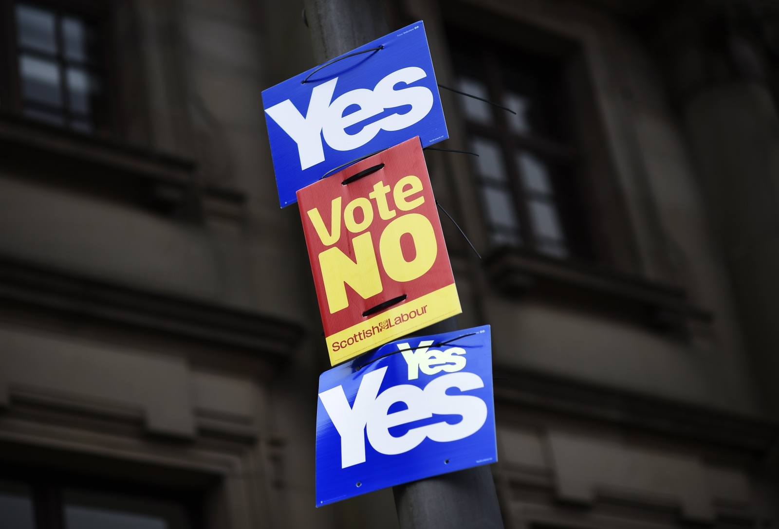 Scottish independence yes and no signs