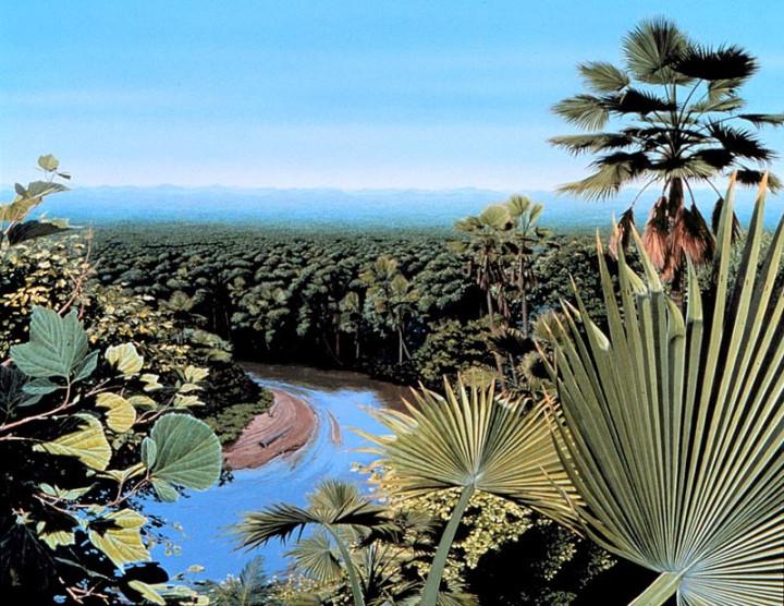 Post-Extinction Landscape