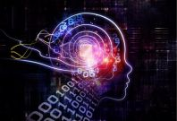 Tech Talk: Neurotech Startup Conducts First Commercial \'Mind Reading\' Scan