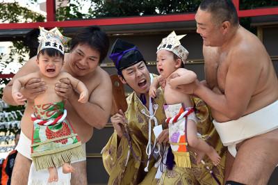 sumo babies