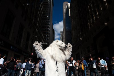 flood wall street polar bear