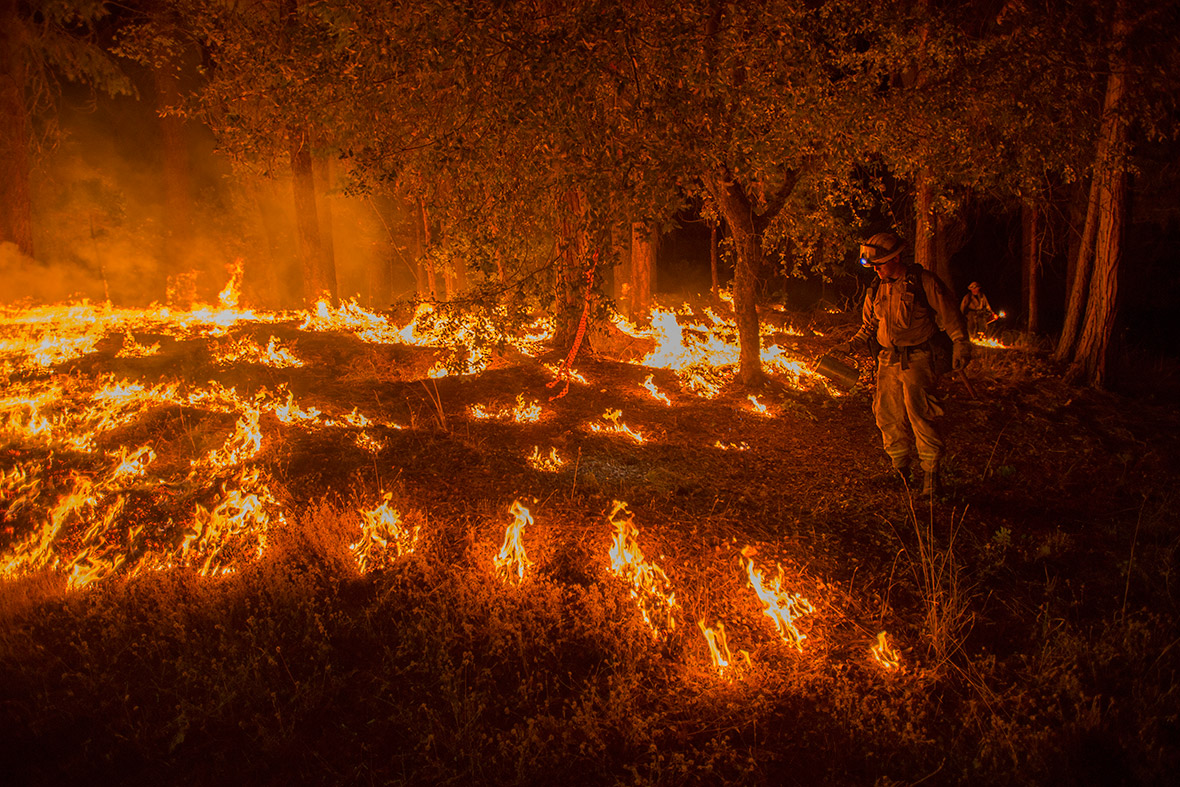 king fire photos