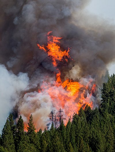 king fire photos
