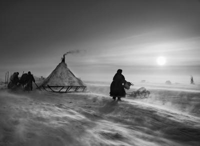 Sebastiao Salgado, Yamal Peninsula, Siberia, Russia, 2011
