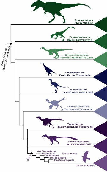 dinosaur evolution timeline