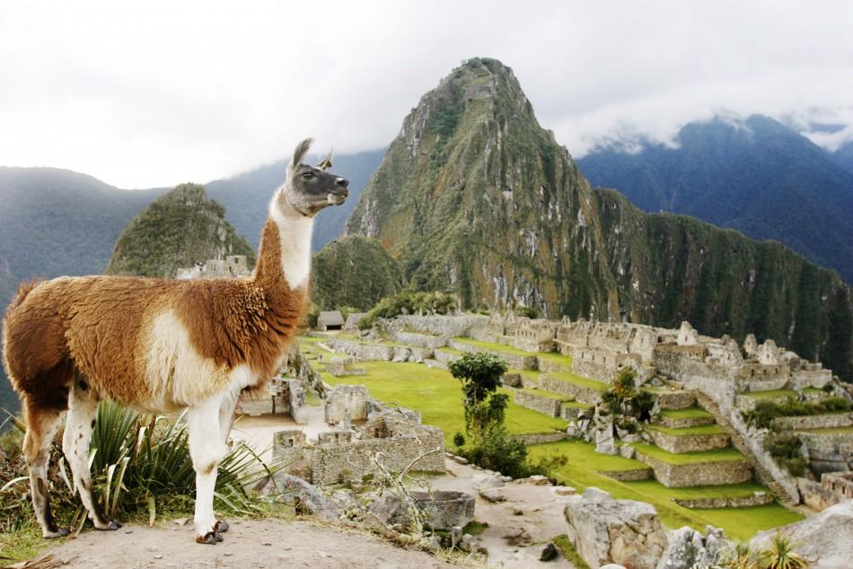 The Lost City - Machu Picchu (PHOTOS)