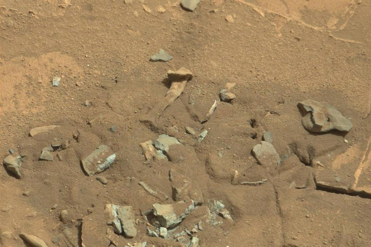 thigh bone on Mars