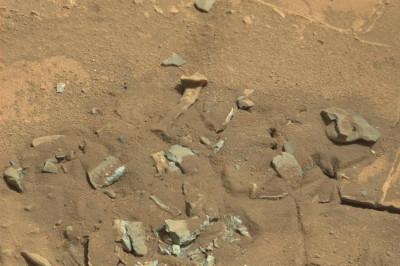 thigh bone on Mars