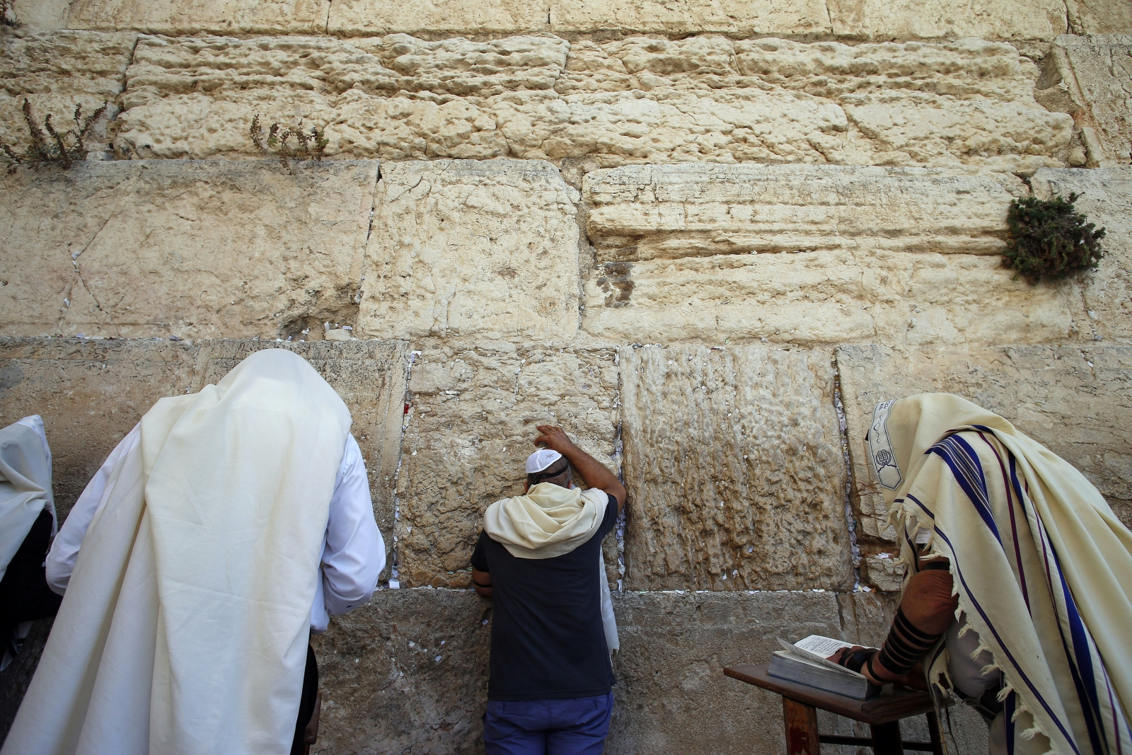 Jewish men pray at the Western Wall, Judaism's holiest prayer site, in Jerusalem's Old City September 17, 2014
