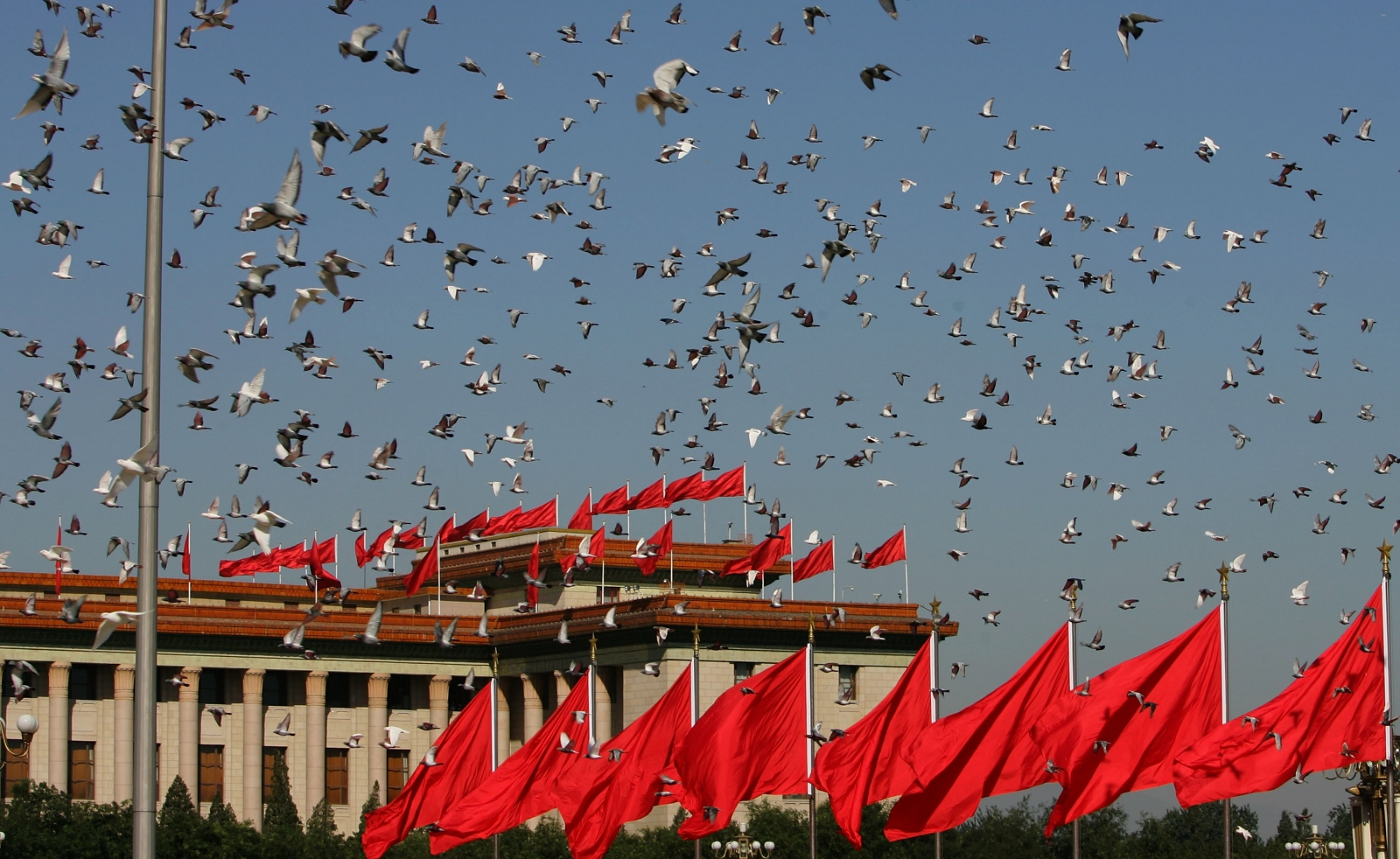 Tiananmen Square Doves Great Hall of the People