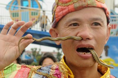 snake nose