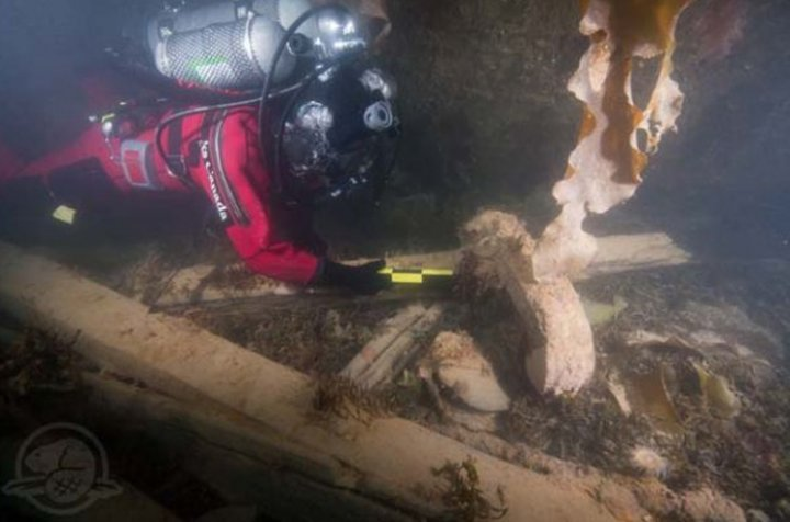 Parks Canada divers exploring the HMS Erebus shipwreck in the Canadian Arctic