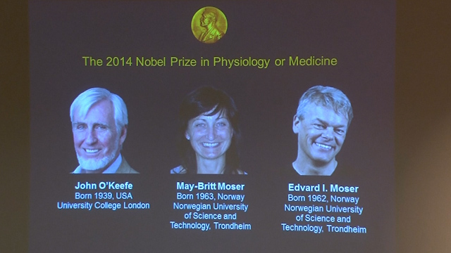Nobel Prize for Medicine Goes to Discoverers of Brain's Internal GPS