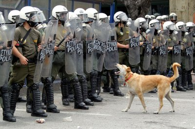 Loukanikos Greece riot dog
