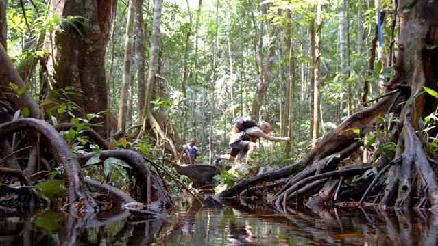 Competitors Brave Jungle Marathon