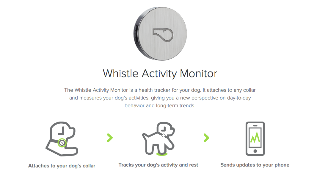 Whistle Activity Monitor