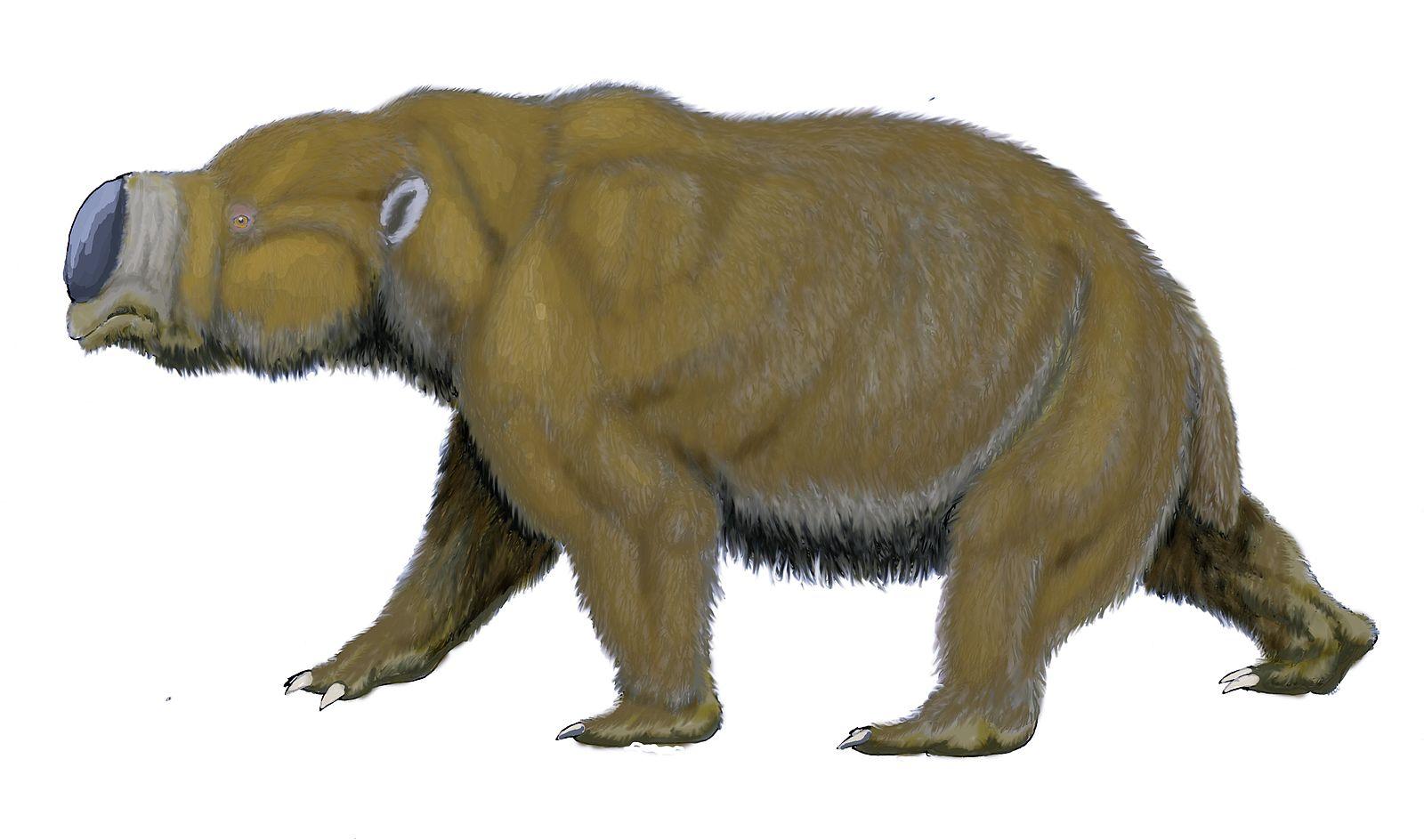 The wombasaurs, diprotodon (WikiCommons)