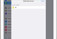 What is Apple SIM?
