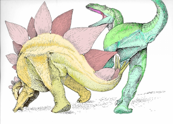 Paleontologist Robert Bakker believes that the spiky tail of the stegosaurus was used as a defensive weapon