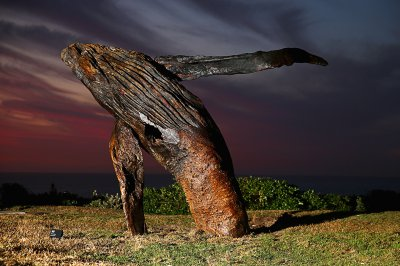 sculptures by the sea Breaching by Michael Greve whale