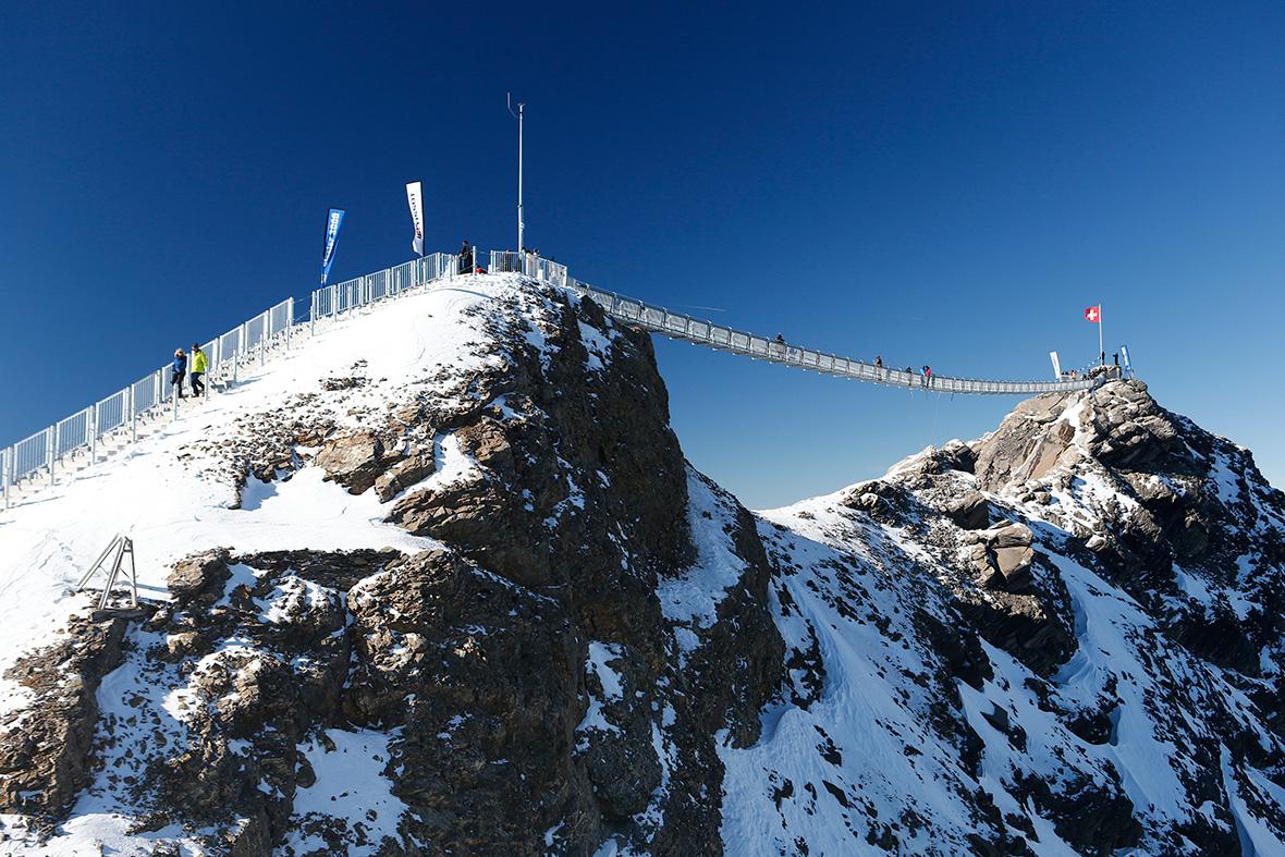 Peak Walk bridge