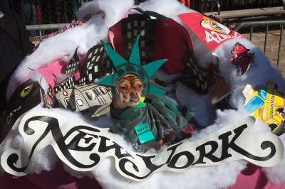 Tompkins Square Halloween Dog Parade in New York
