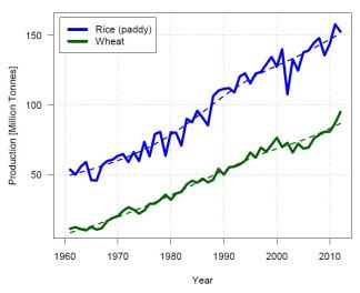 India Rice Wheat Production