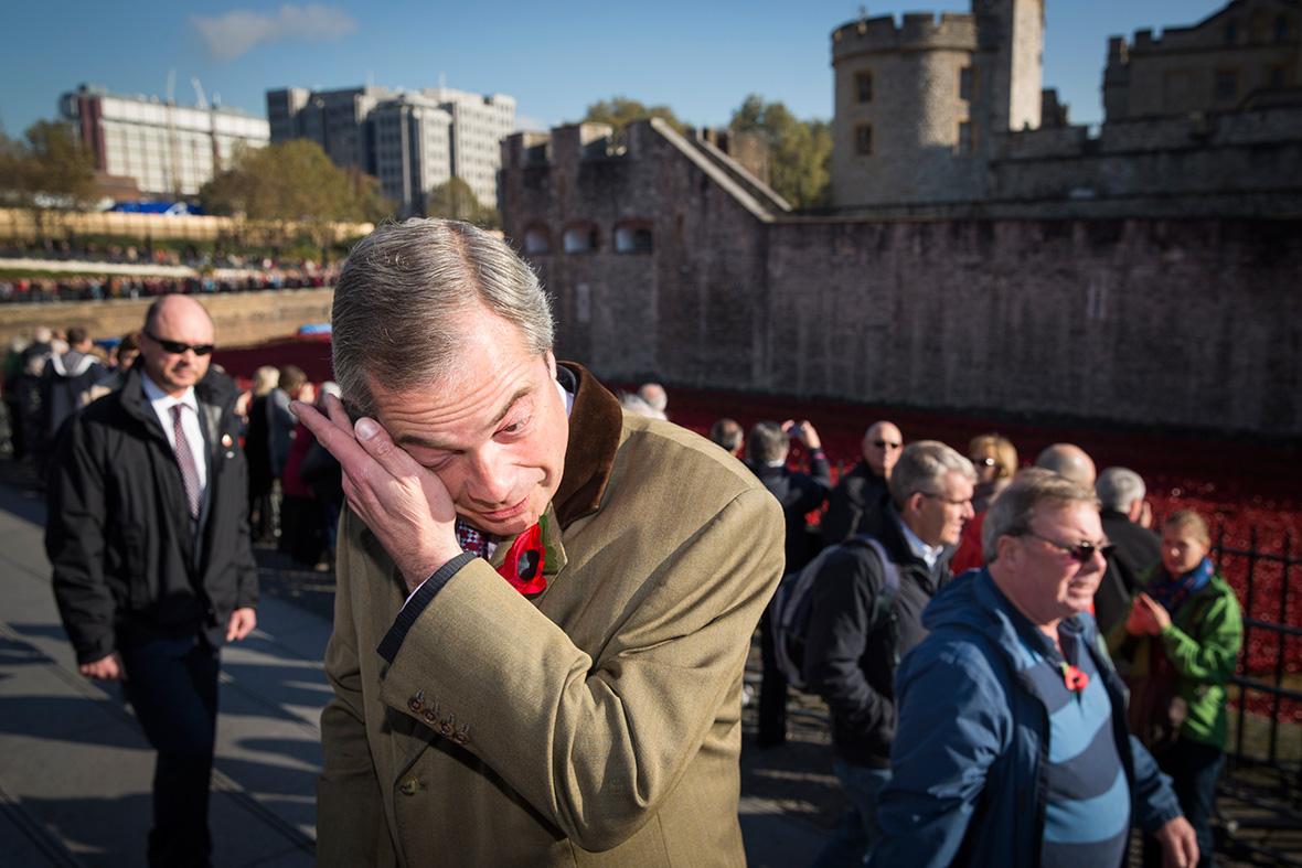 Nigel farage poppies