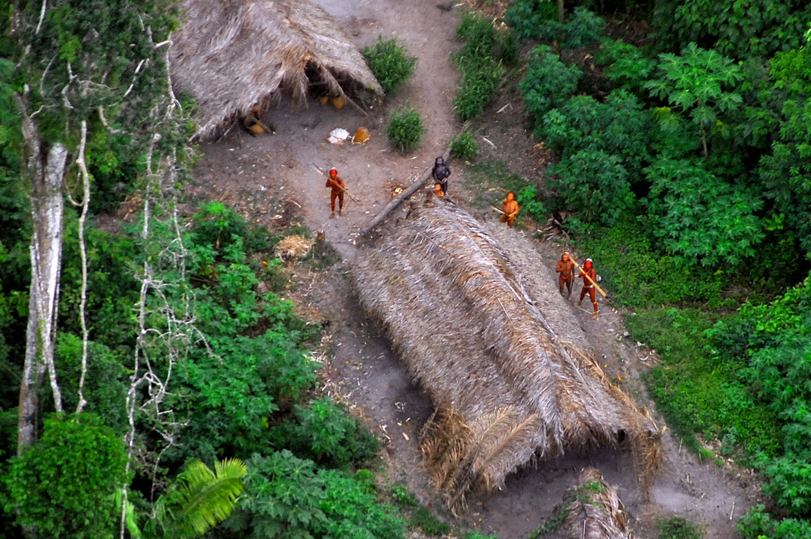 Members of an isolated Amazon tribe by a traditional longhouse, captured by satellite imaging