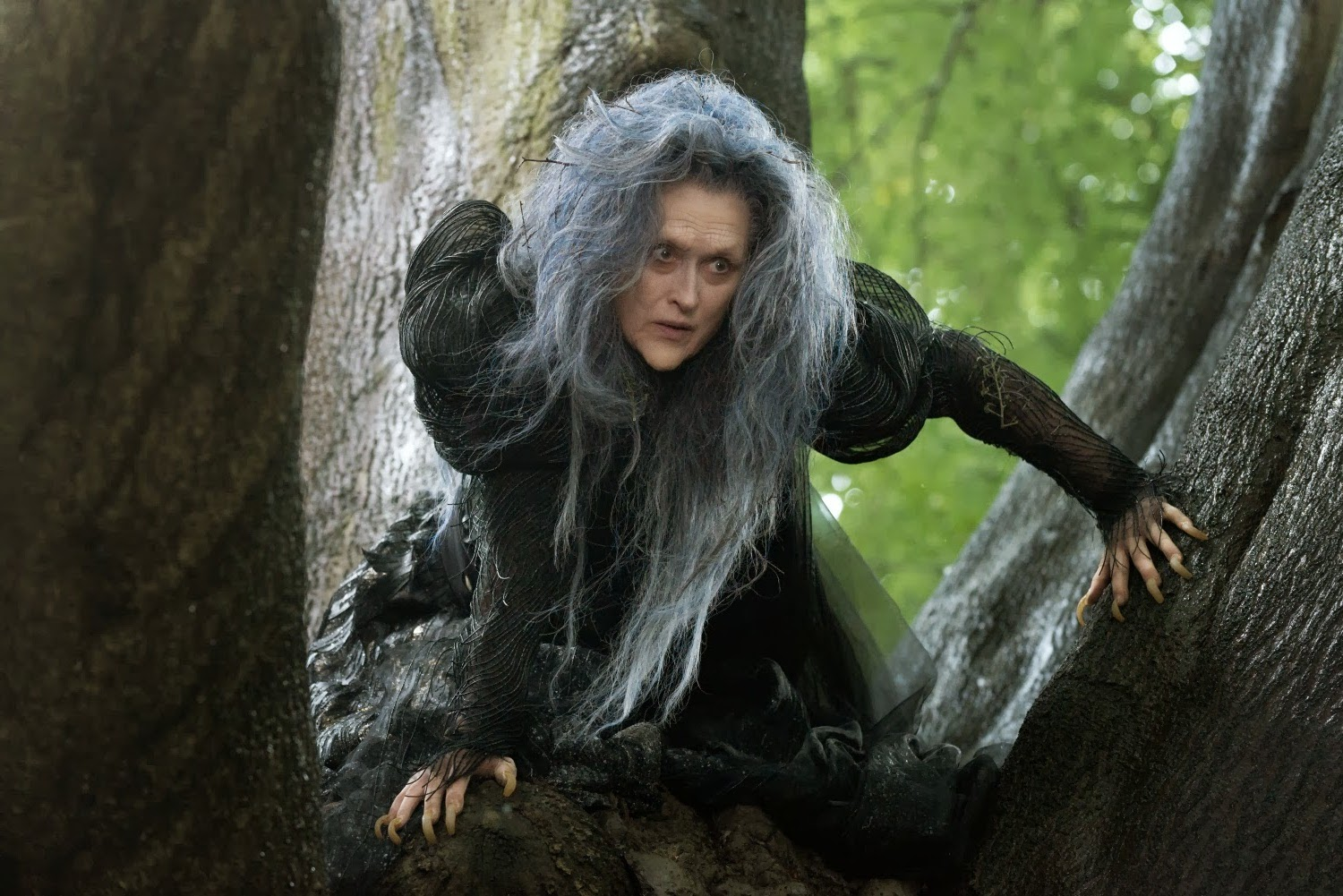 Meryl Streep plays the Witch in Disney's film adaptation of Into The Woods