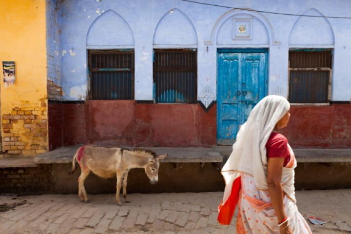 India donkey woman naked