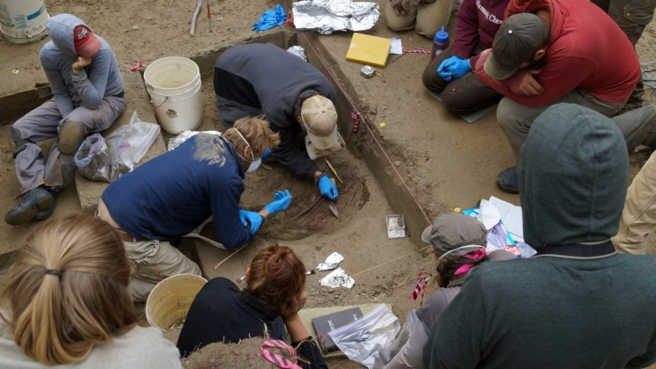 Alaska: Remains of Ice Age Infants Discovered in Burial Pit Beneath Cremated Toddler